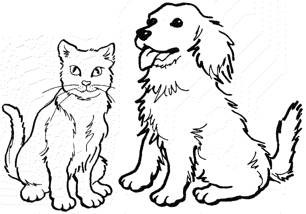 Cat and dog coloring pages to download