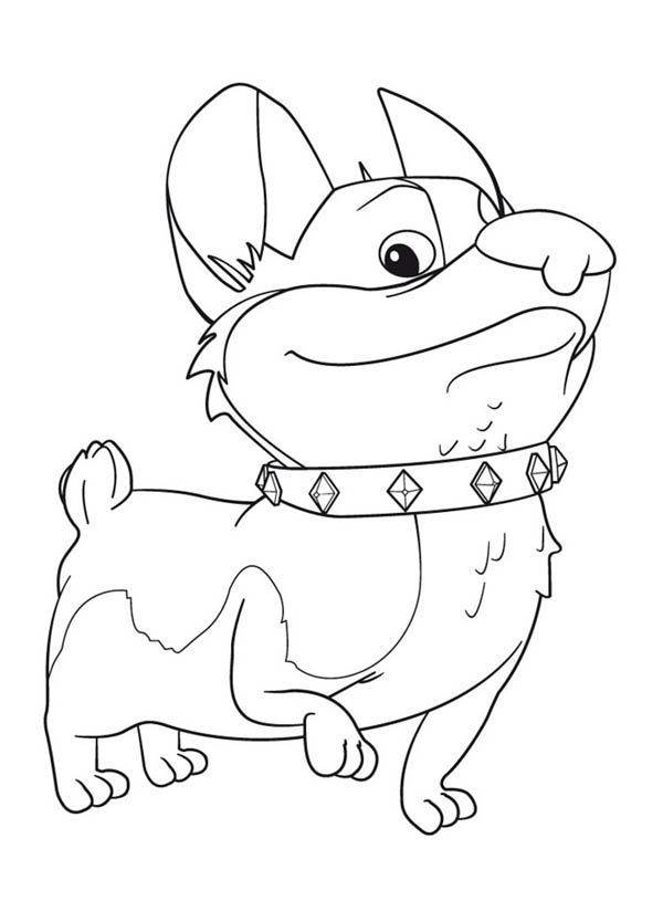 Corgi Coloring Pages Download And Print For Free Corgi Coloring Pages
