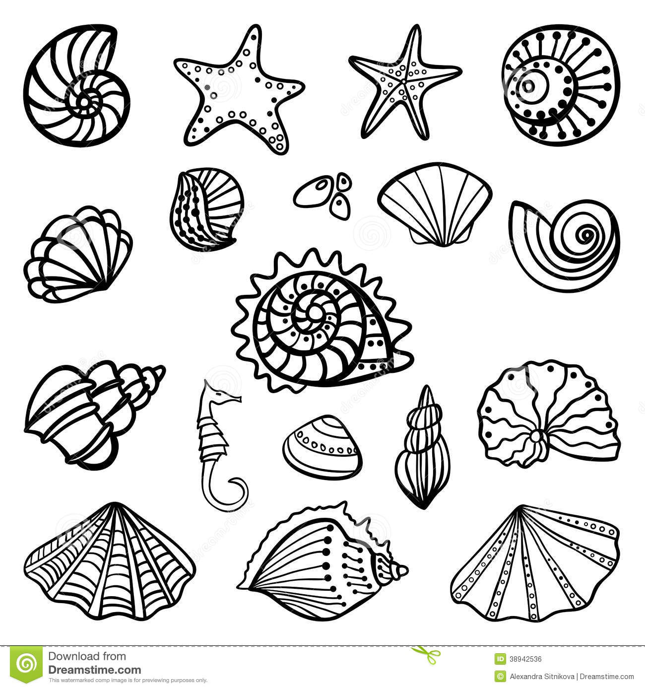 shells coloring page beach shells coloring pages download and print for free