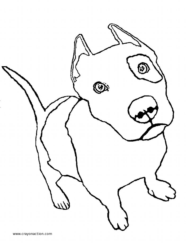 Coloring Pages Pit Bull Coloring Pages pitbull coloring pages to download and print for free pages