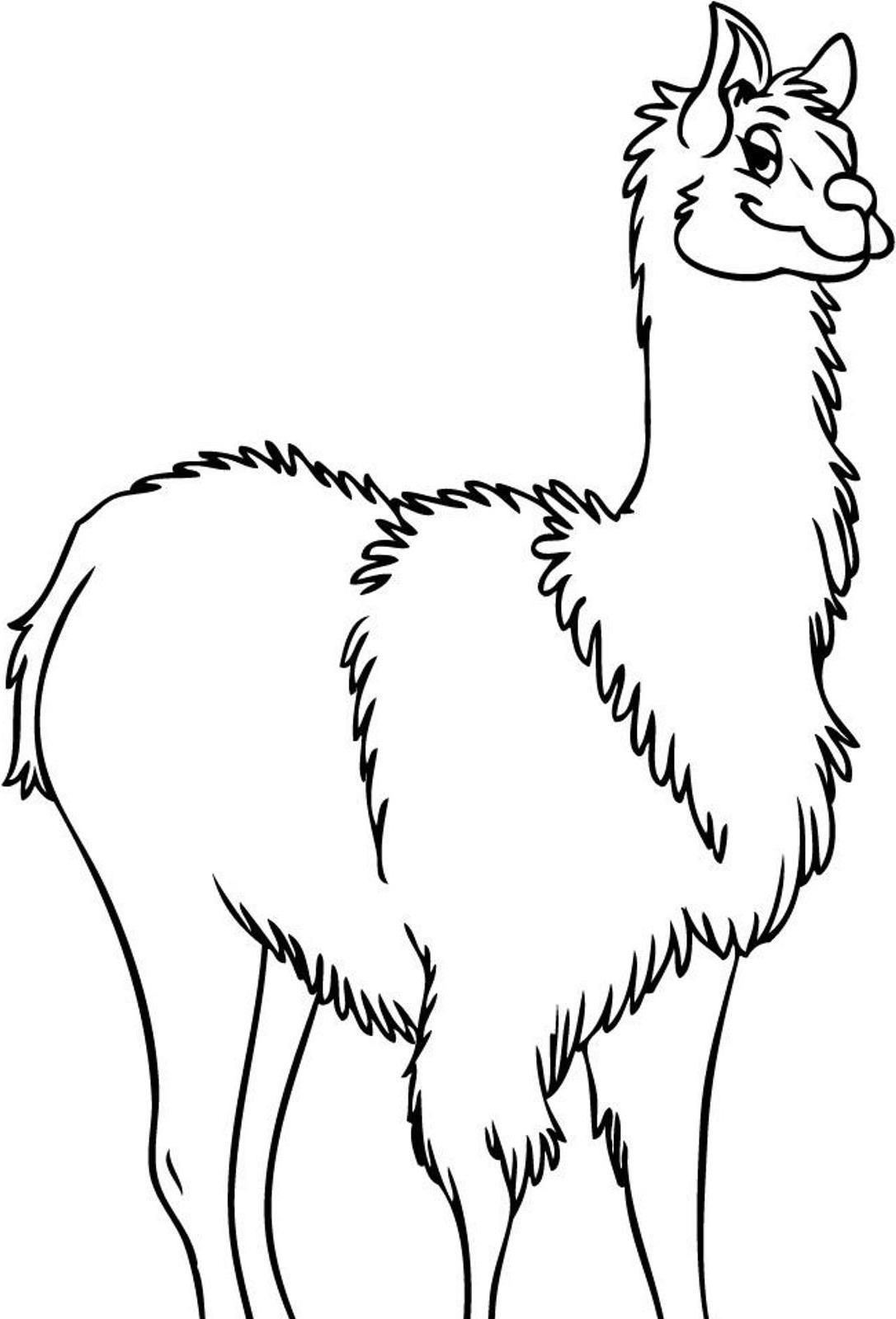 coloring pages llamas - photo#22