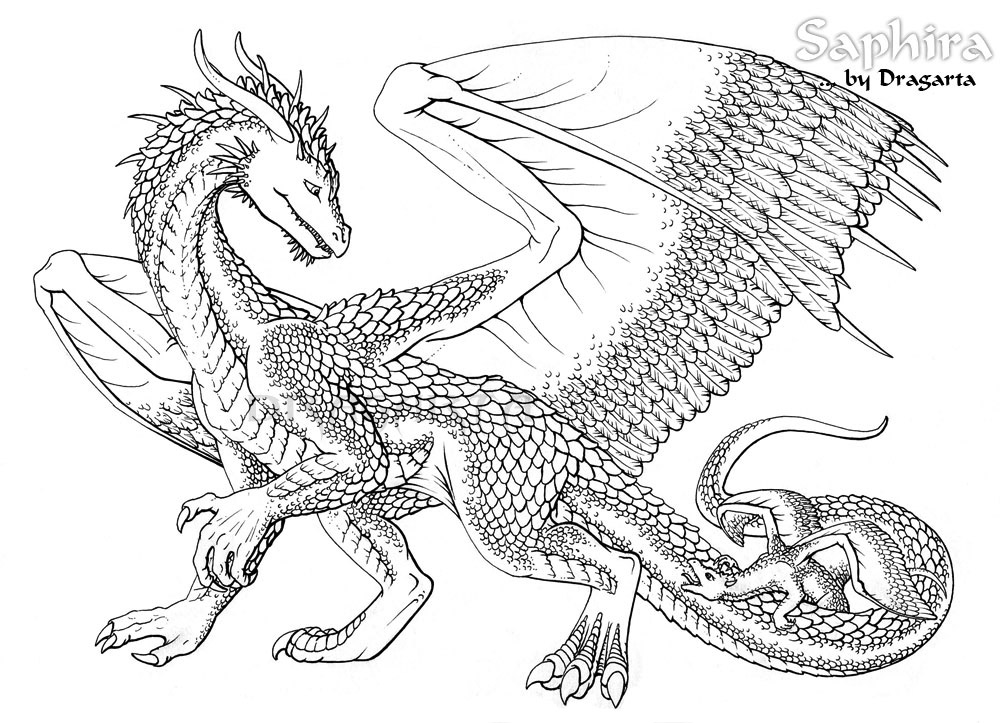 This is a graphic of Modest Dragon Coloring Picture