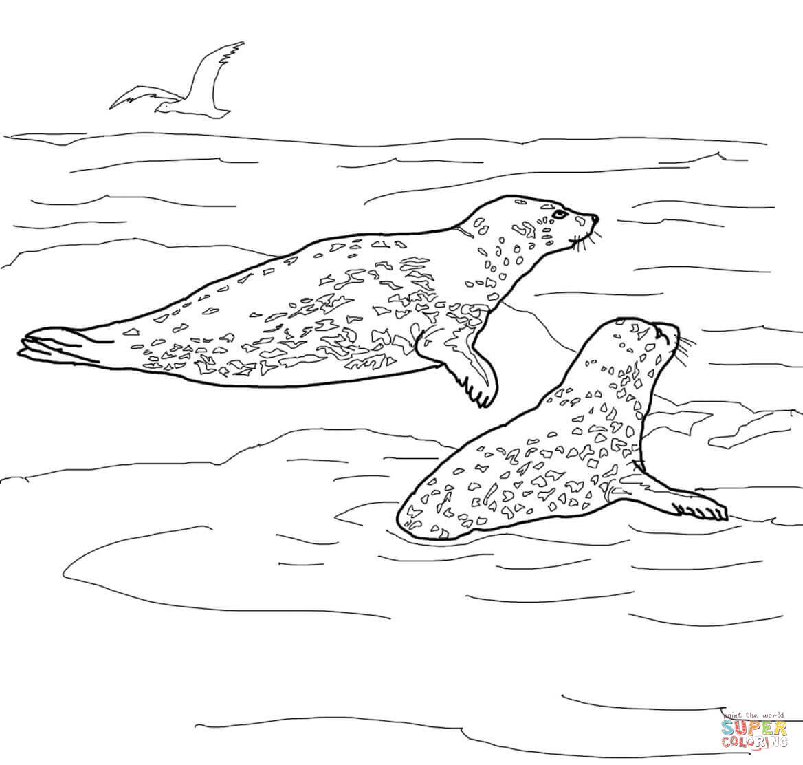 Leopard seal coloring pages download
