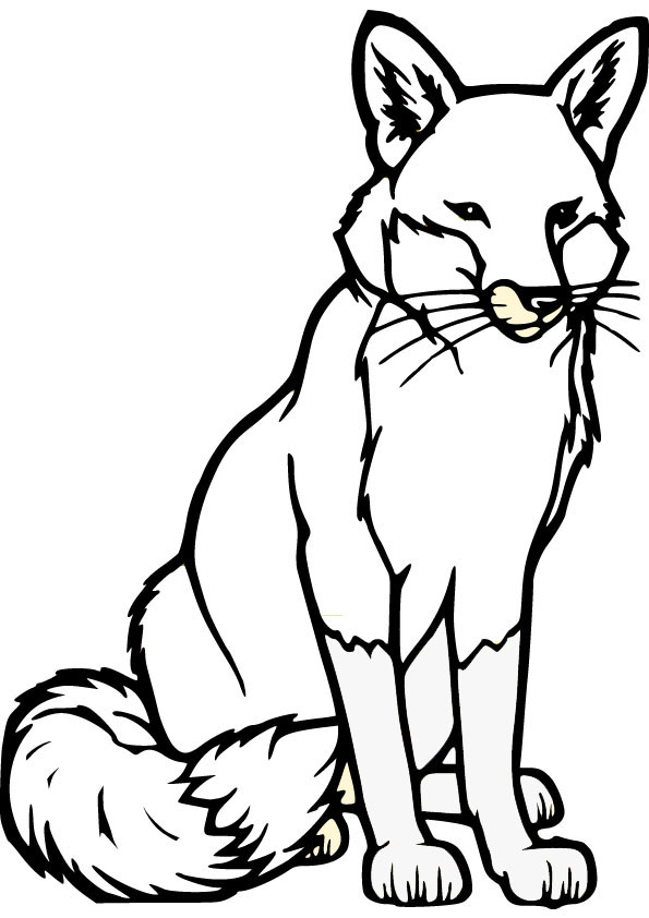 Fox coloring pages to download and print for free