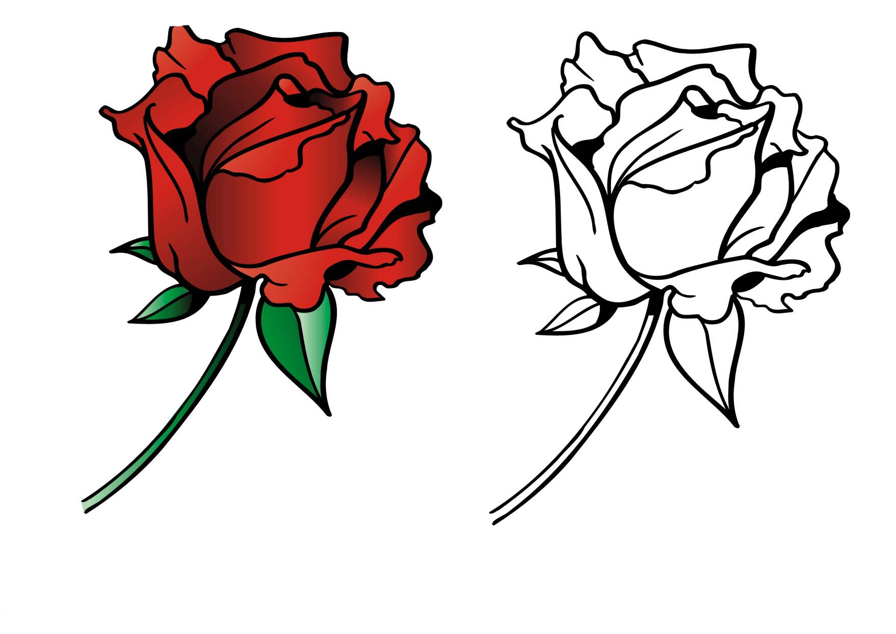 Roses coloring pages to download