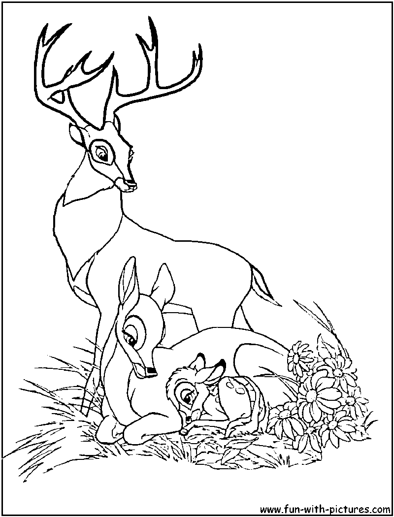 Adult Top Bambi 2 Coloring Pages Gallery Images beauty bambi and friends coloring pages download print for free images