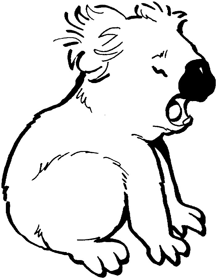koala coloring pages - Cute Jungle Animal Coloring Pages