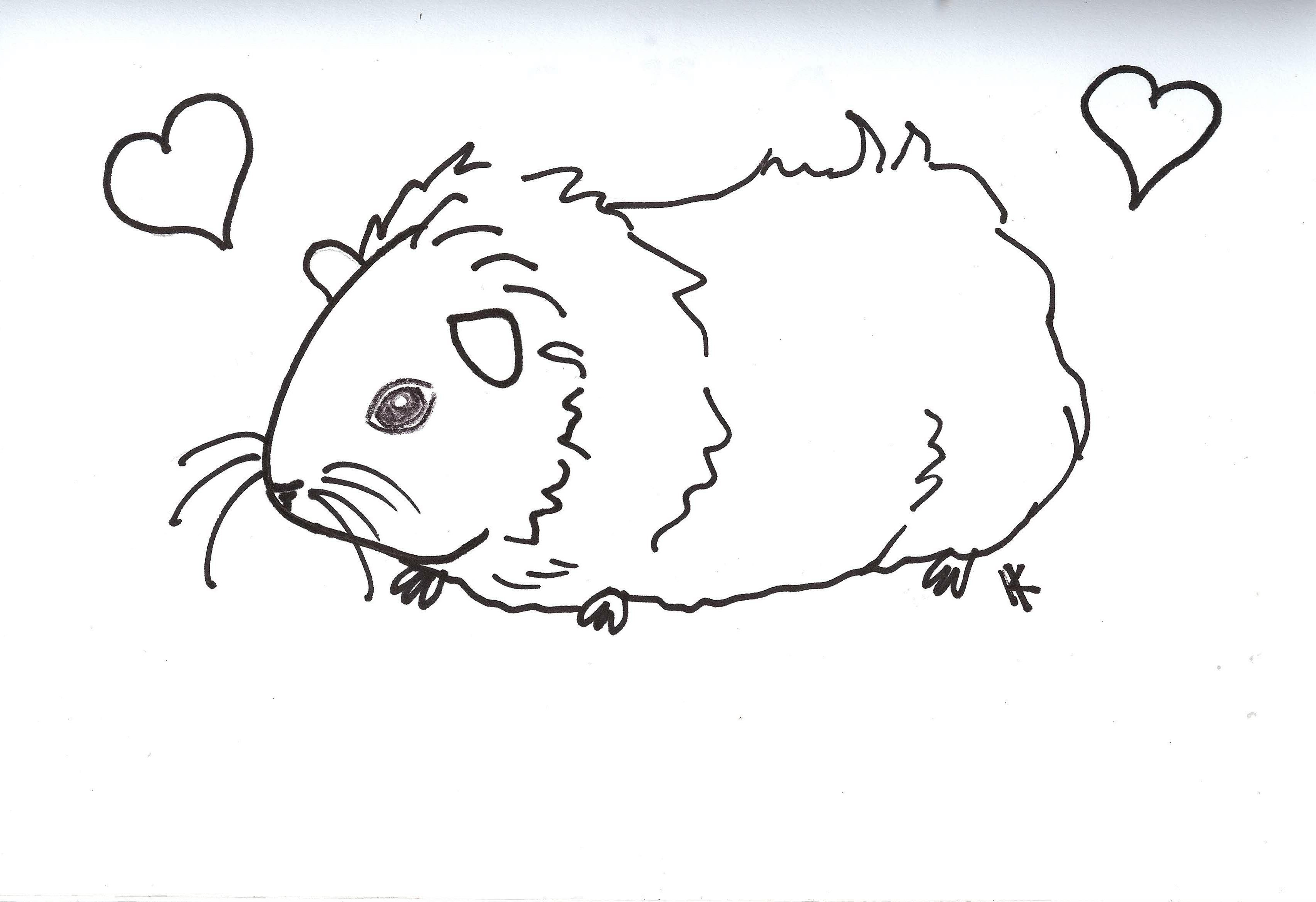 free pig coloring pages - photo#43
