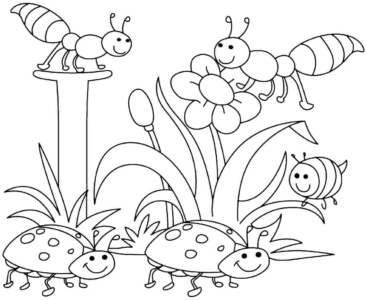 Free printable coloring pages graduation - Kindergarten Graduation Colouring Pages Springtime Coloring Pages