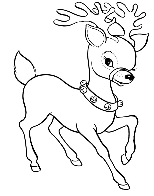 coloring pages draw a deer. Baby reindeer coloring pages download and print for free