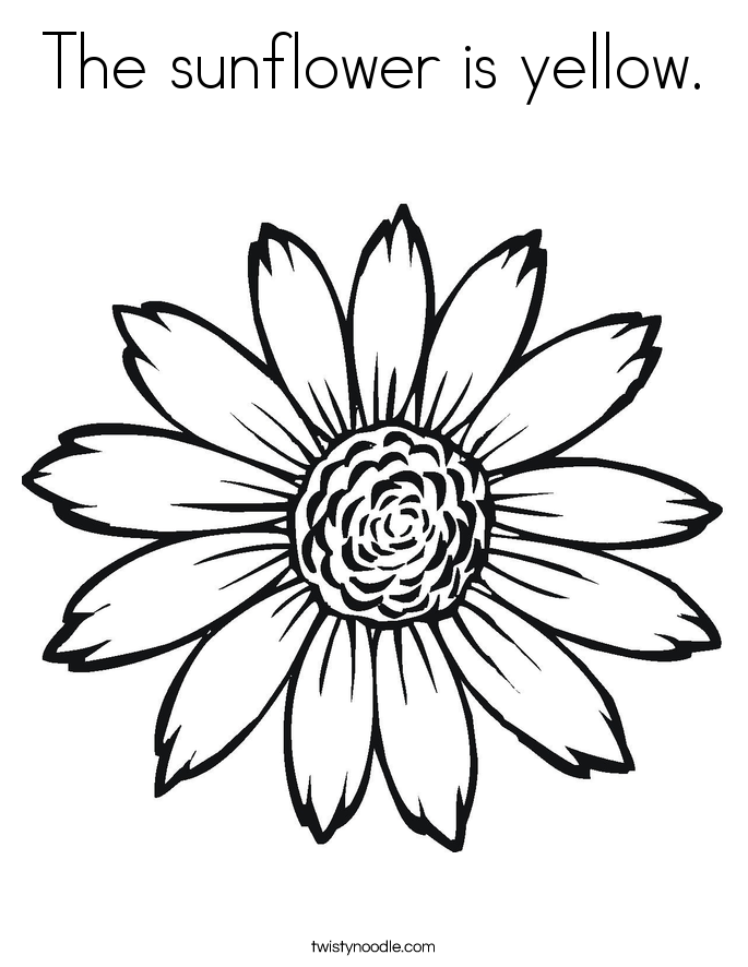 This is a graphic of Ambitious Coloring Pages Sunflowers
