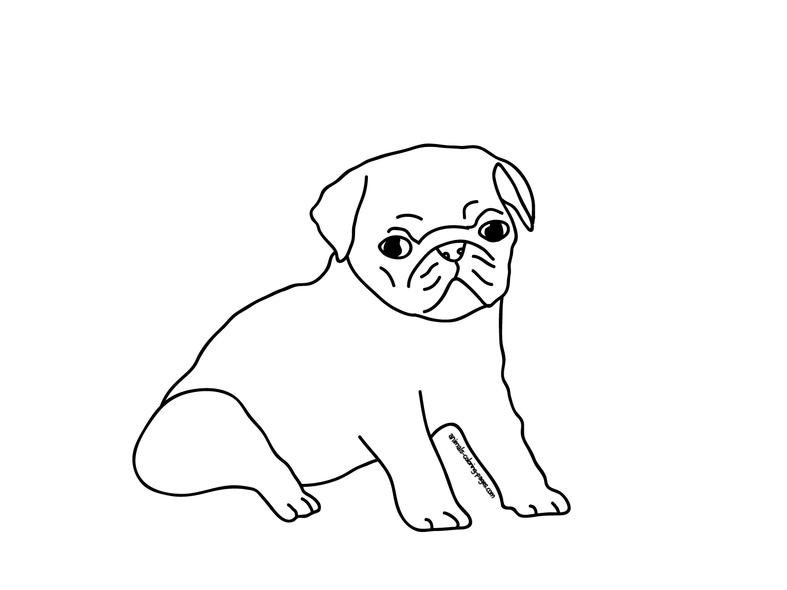 pug coloring pages - photo#24