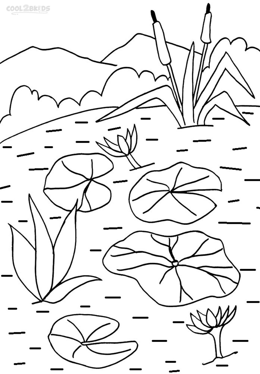 Water lilies coloring pages download