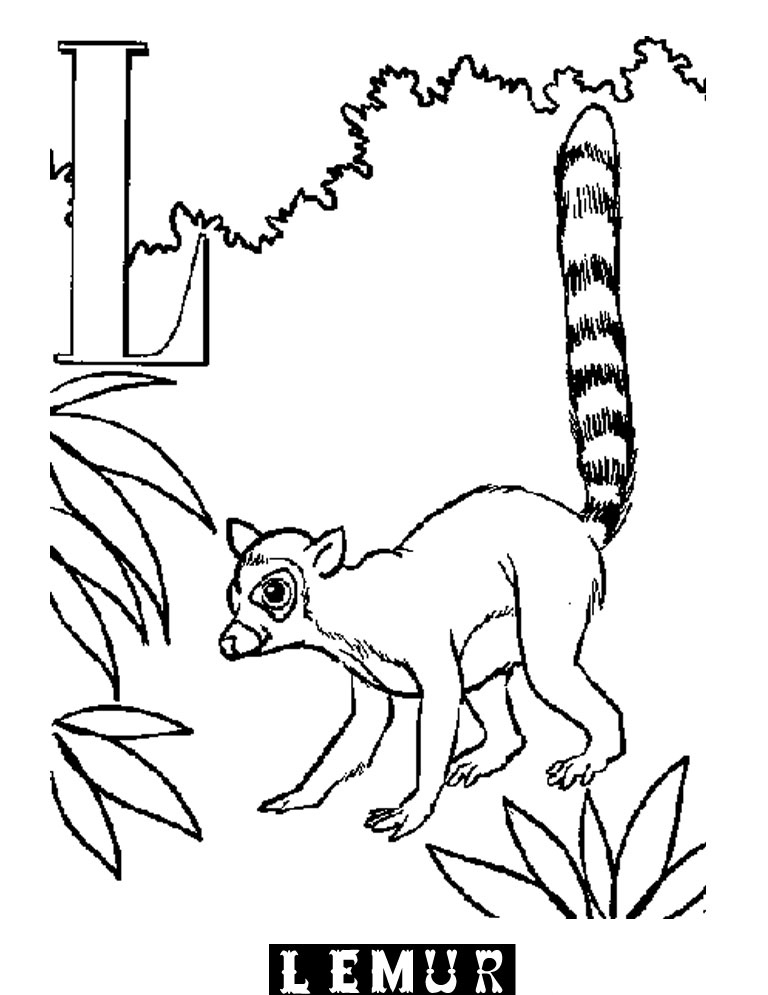 Lemur Coloring Page Printable Coloring Pages