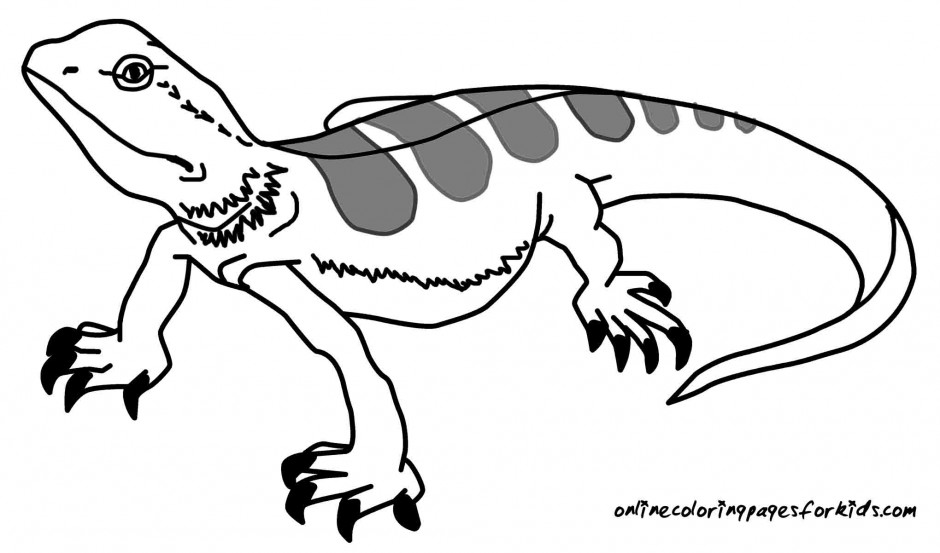Monitor lizard coloring pages download