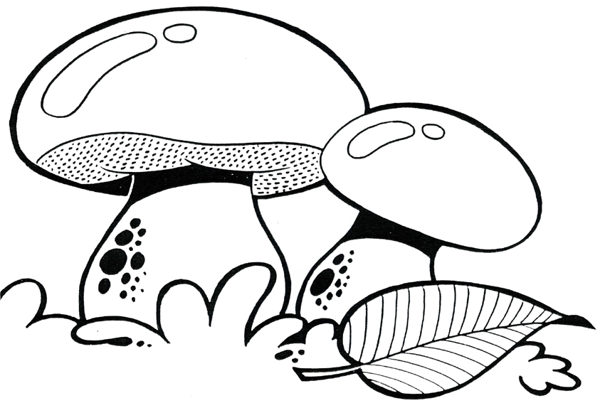 coloring pages mushrooms - photo#2