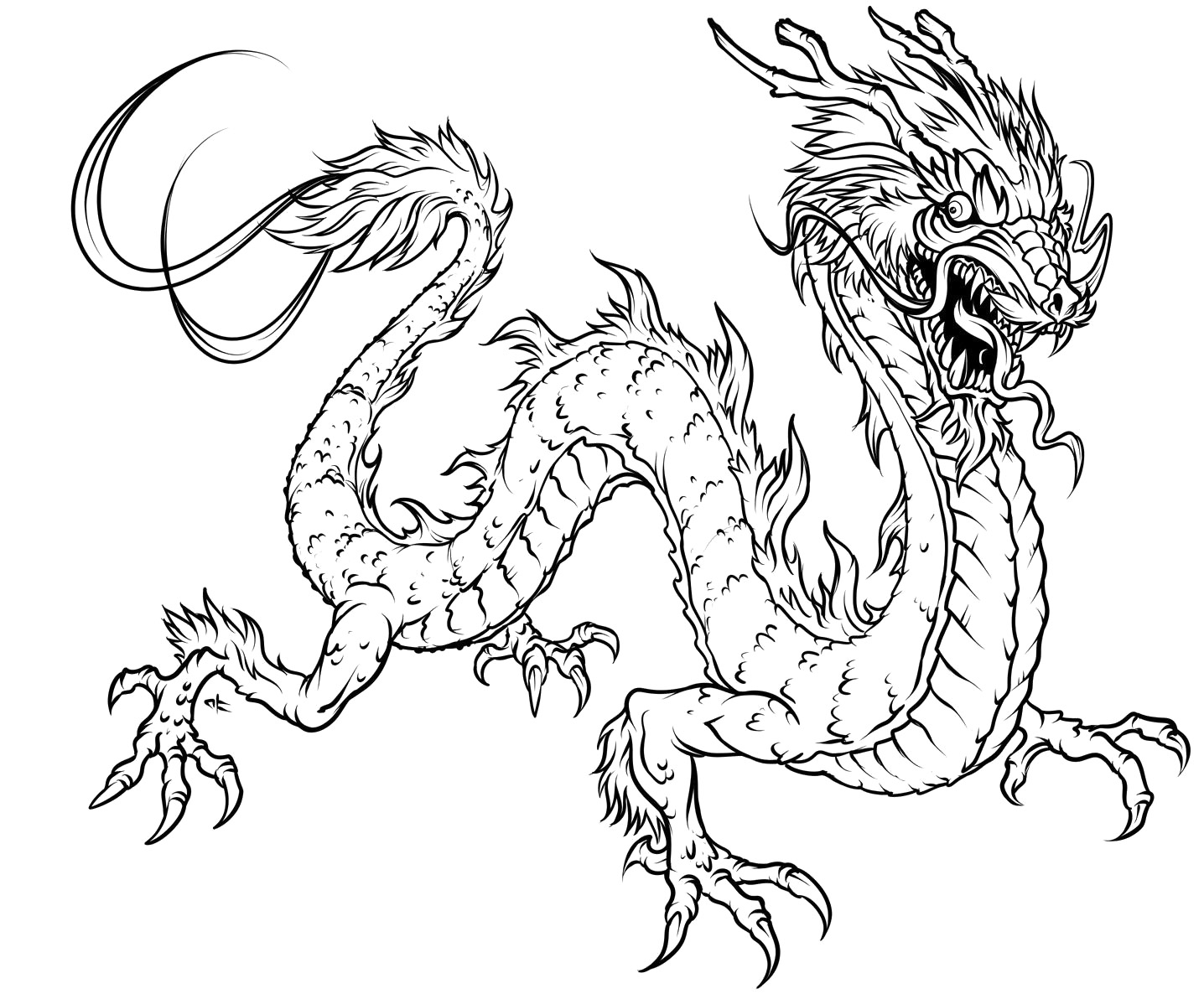 Dragon Coloring Pages For Adults Printable : Dragon coloring pages for adults to download and print for free
