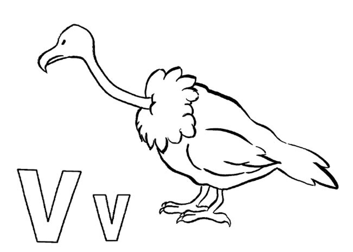 Vulture Coloring Pages Download And Print For Free Vulture Coloring Page