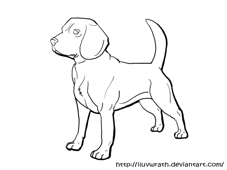 Beagle coloring pages to download