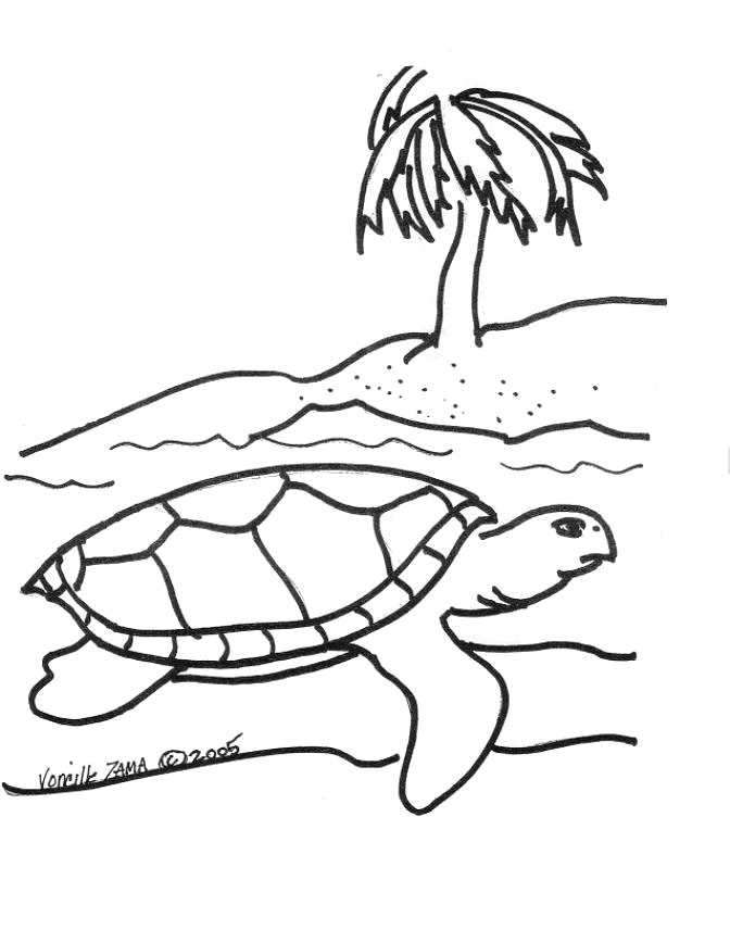turtles coloring pages - photo#43