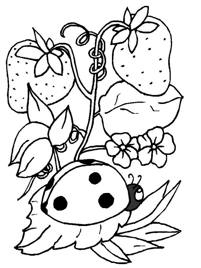 good ladybug coloring pages to download and print for free with free spring coloring pages