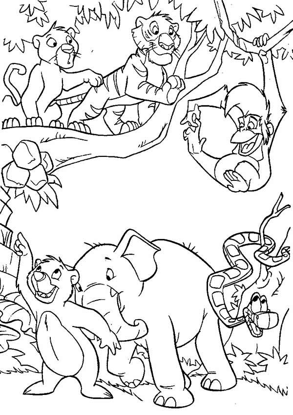 Coloring Pages Jungle Animals : Jungle book coloring pages to download and print for free