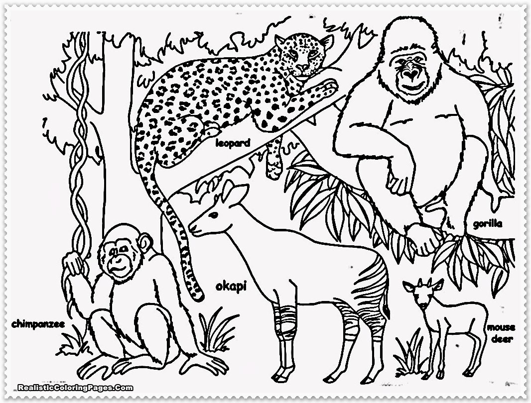 coloring pages jungle scenes - photo#33
