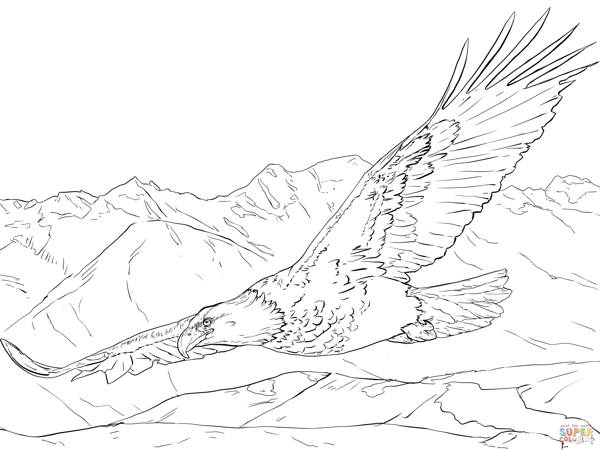 free bald eagle coloring pages to print for kids download print