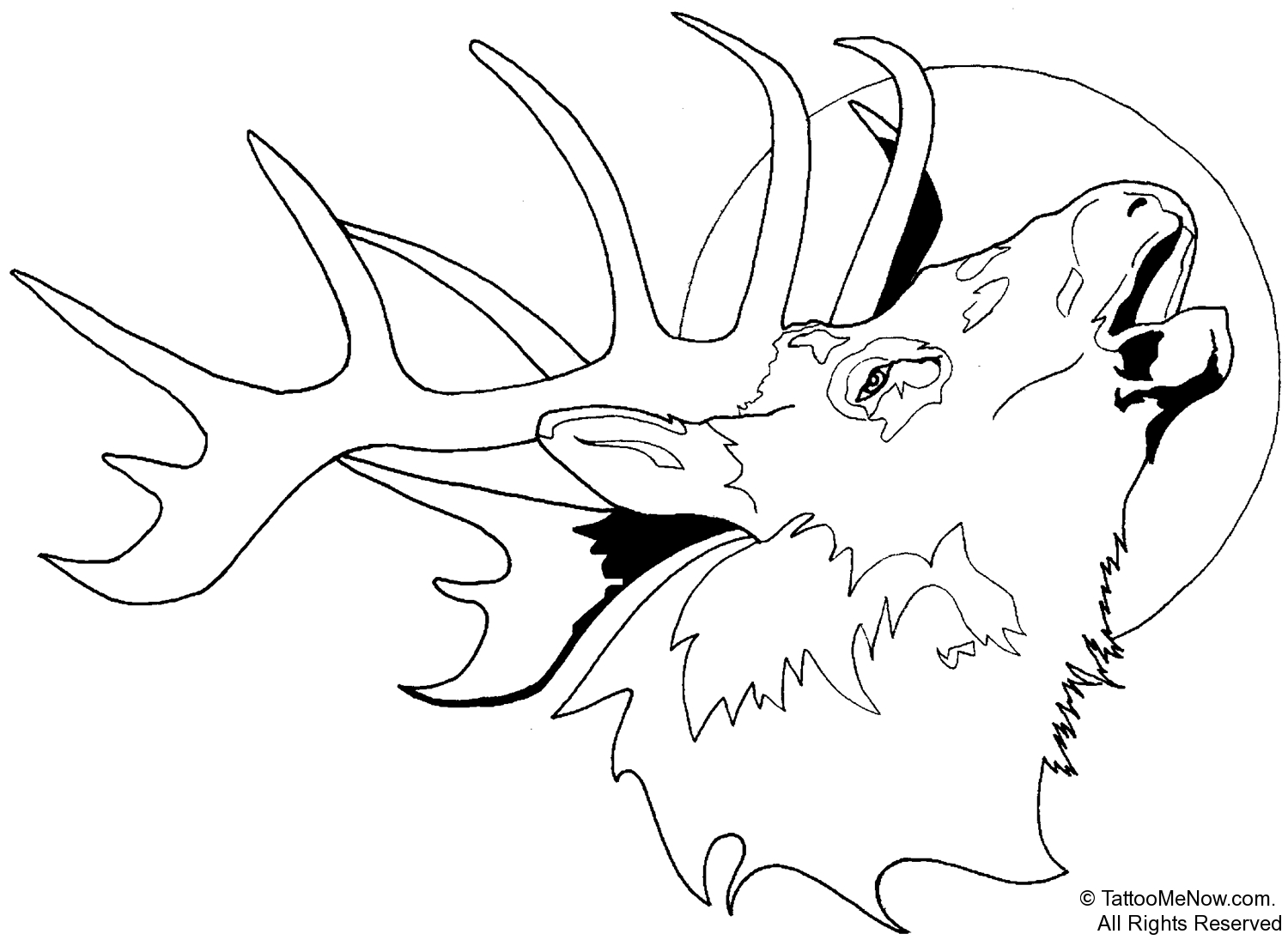 Adult Cute Elk Coloring Page Gallery Images best elk coloring pages jamesenye bull download and print for free images