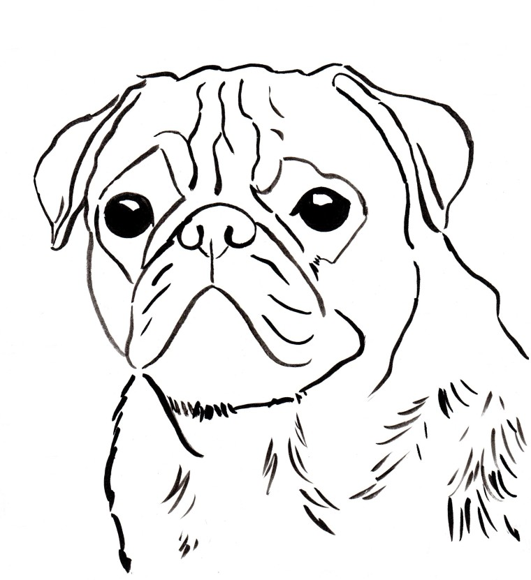 Pug coloring pages to download and print for free for Cute pug coloring pages