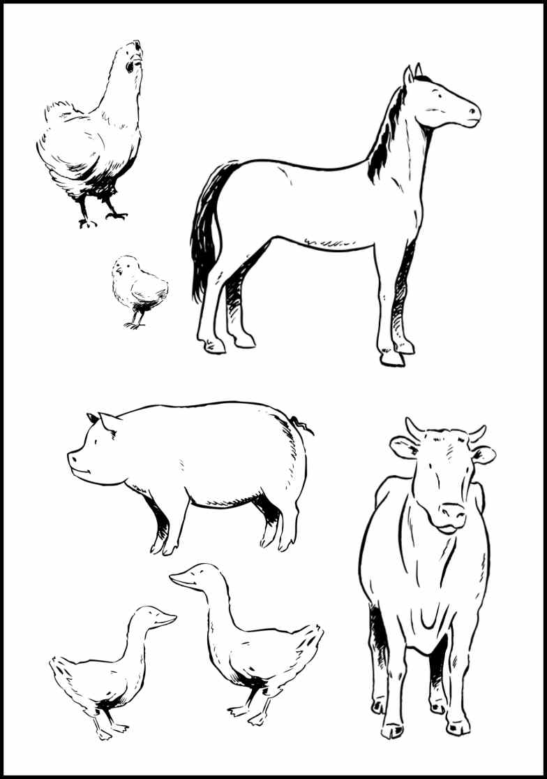 Farm animal coloring pages to download
