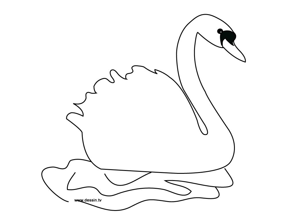 Раскраски лебеди - 7