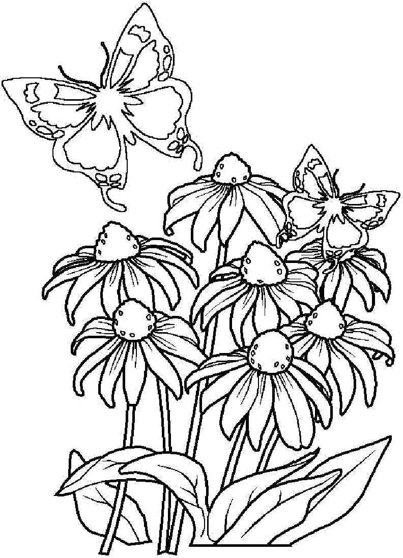 pics of coloring pages flowers - photo#9