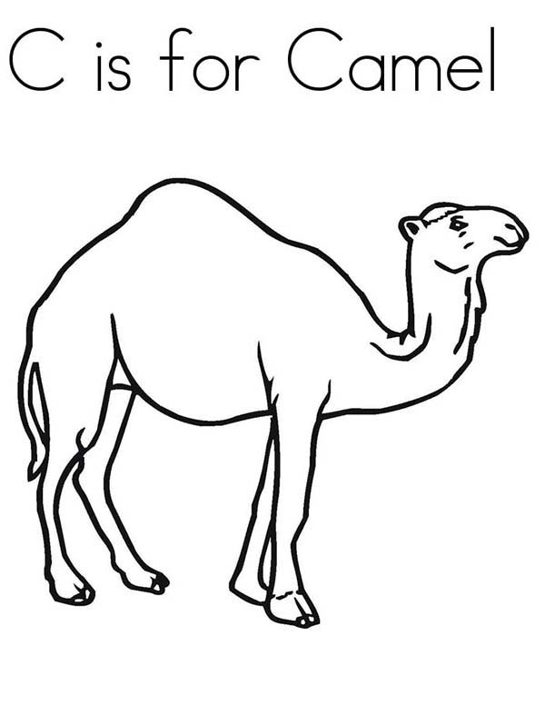 Camel Coloring Pages To Download And Print For Free Camel Coloring Pages