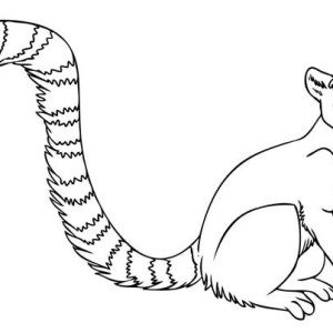 Tail coloring pages to download and print for free