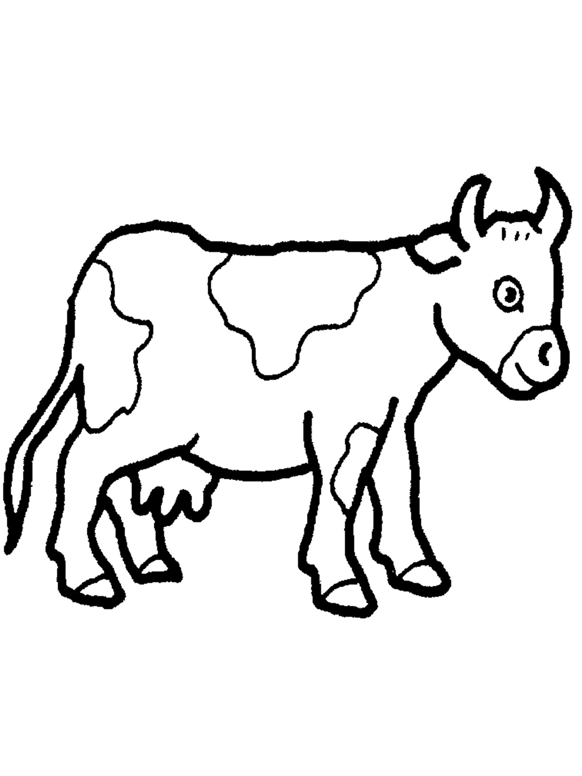 Cows coloring pages to download
