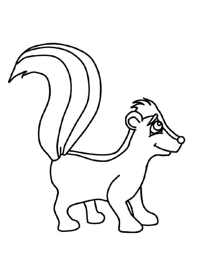 Skunk coloring pages to download and print for free