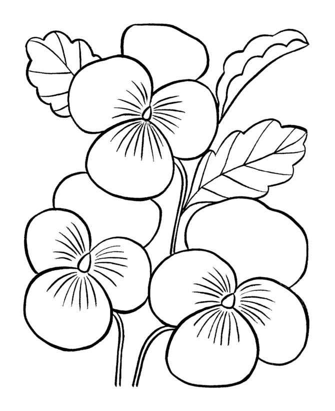 Large flowers coloring pages to download and print for free