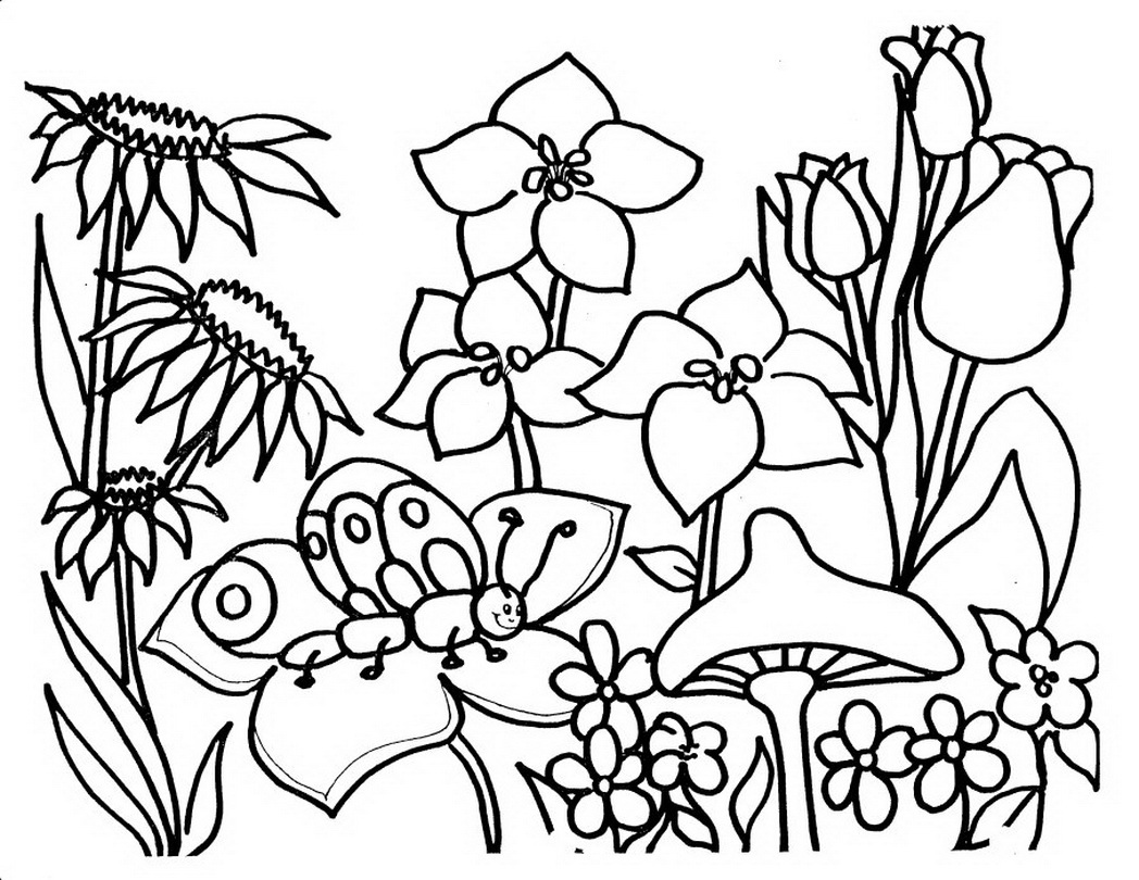 Free coloring page garden - Gardening Coloring Pages
