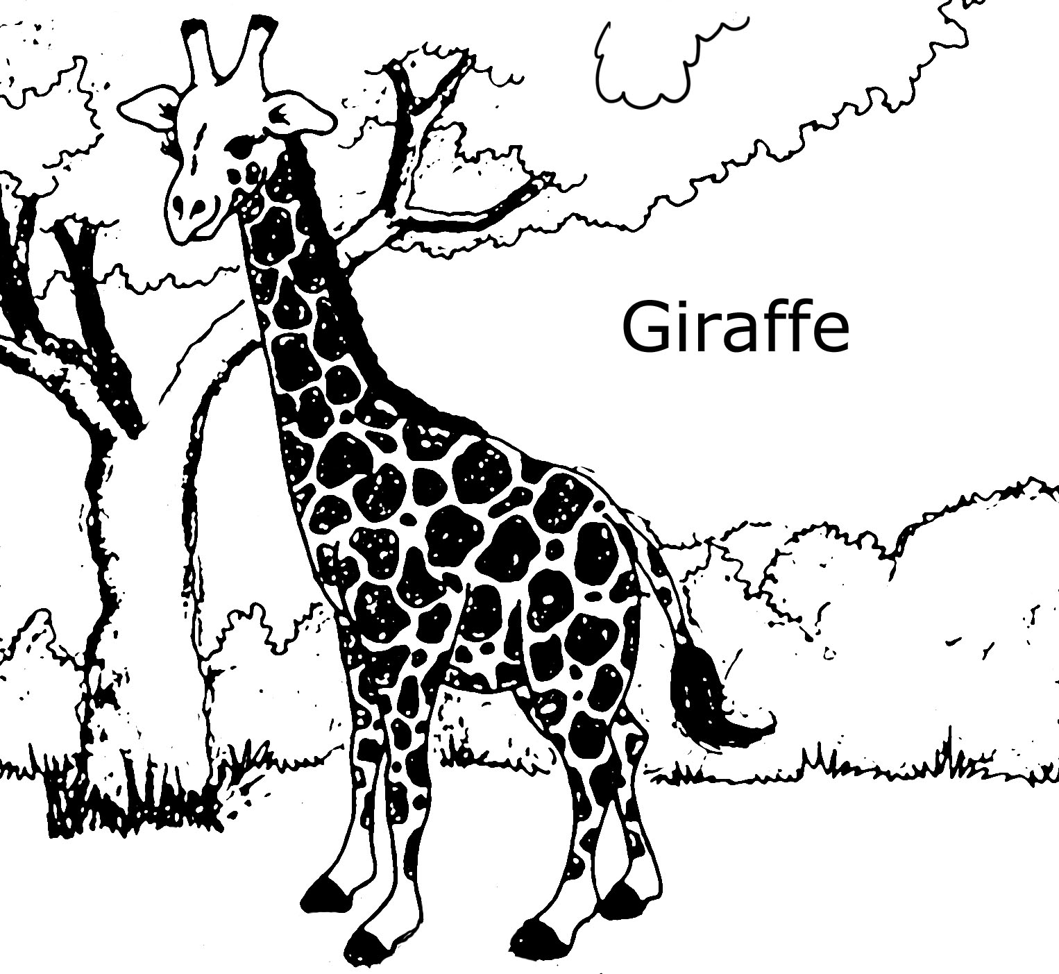 Giraffes coloring pages to download and print for free for Animal coloring pages giraffe