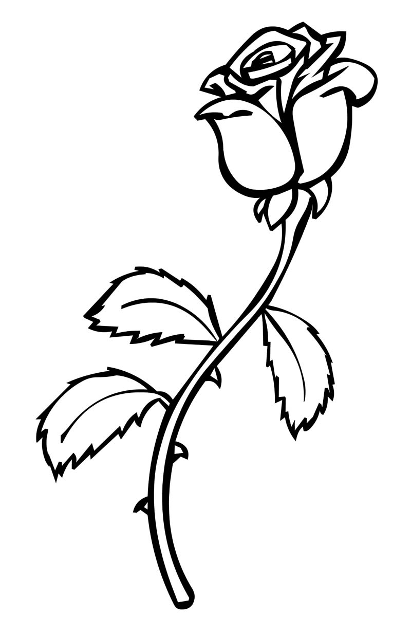 Roses coloring pages to download and print for free for Rose color pages