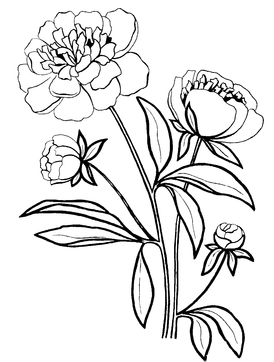 coloring pages sites - photo#7