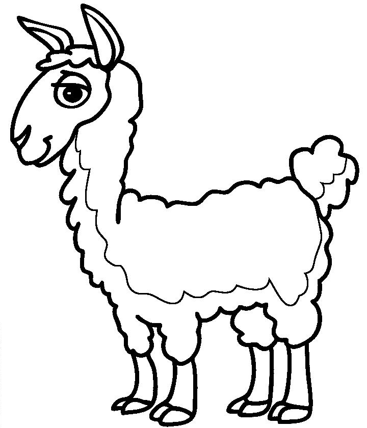 lama coloring pages to download and print for free