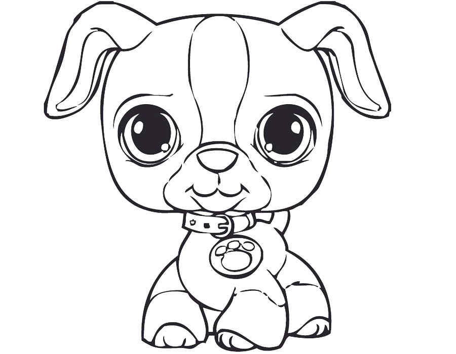 Littlest pet shop coloring pages for kids to print for free for Littlest pet shop coloring pages to color online