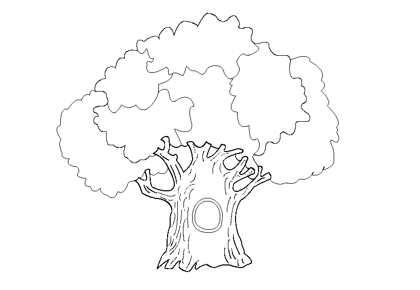 oak tree coloring page - oak coloring pages to download and print for free