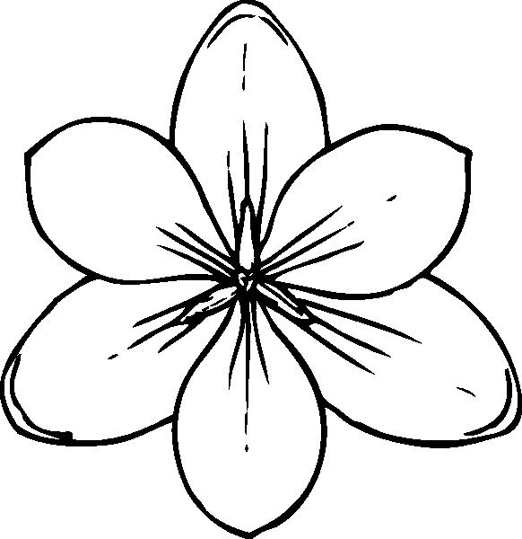 Free Colouring Pages Flowers Large flowers coloring pages to download and print for free