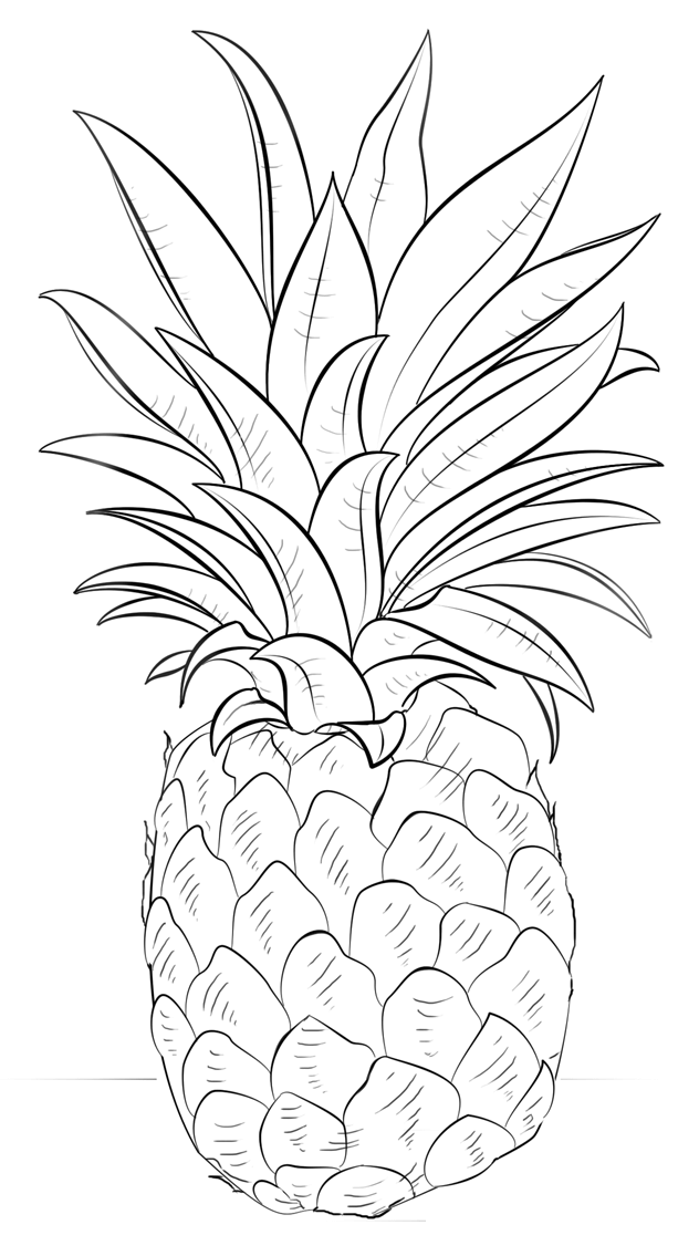 pineapple coloring pages to download and print for free. Black Bedroom Furniture Sets. Home Design Ideas