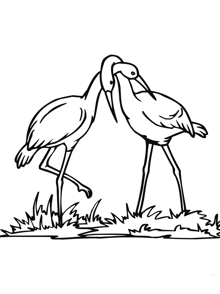 Stork coloring pages to download