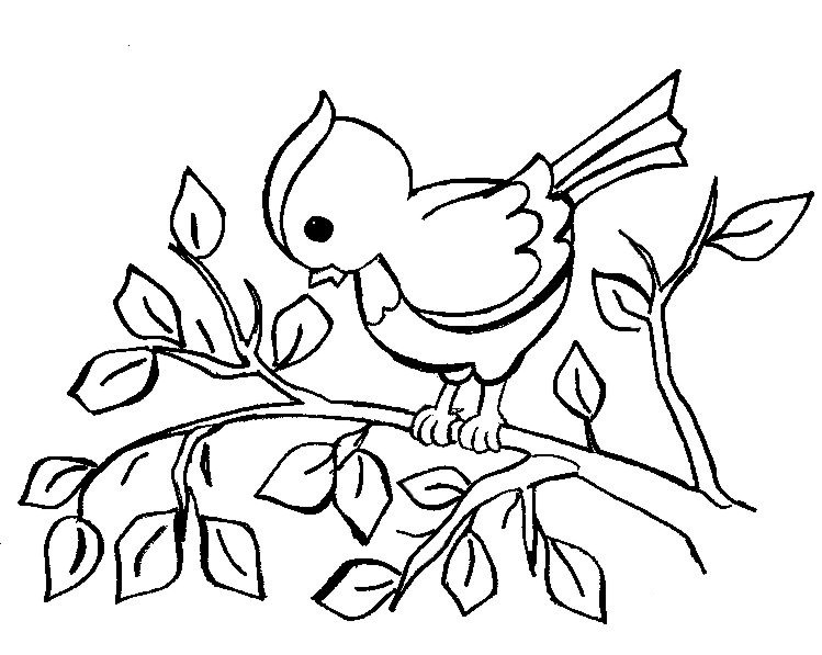 Coloring pages for children of 4-5 years to download and ...