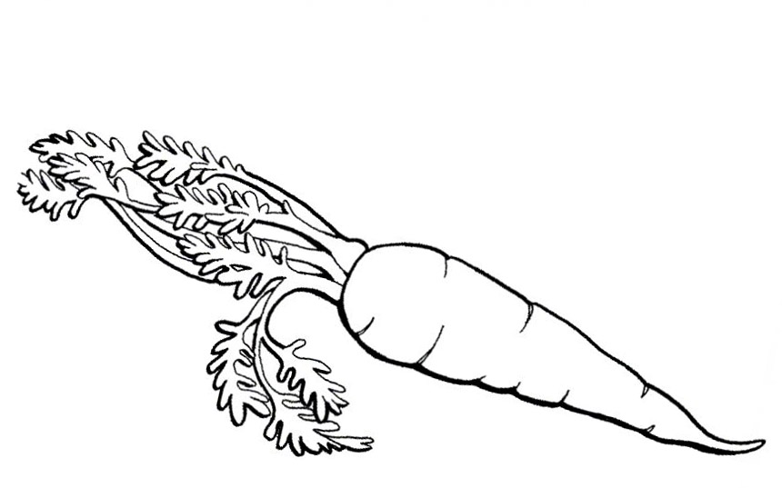 Carrot Coloring Pages To Download And Print For Free